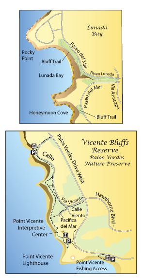 Bluff Cove To Lunada Bay Palos Verdes California Hikes