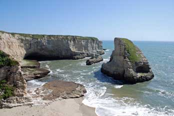 Shark Fin Cove (or Shark Tooth Beach, Davenport, CA